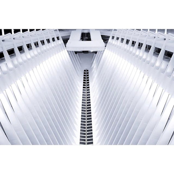 <div class='meta'><div class='origin-logo' data-origin='none'></div><span class='caption-text' data-credit='biggz3579'>Photo of WTC Oculus via Instagram</span></div>