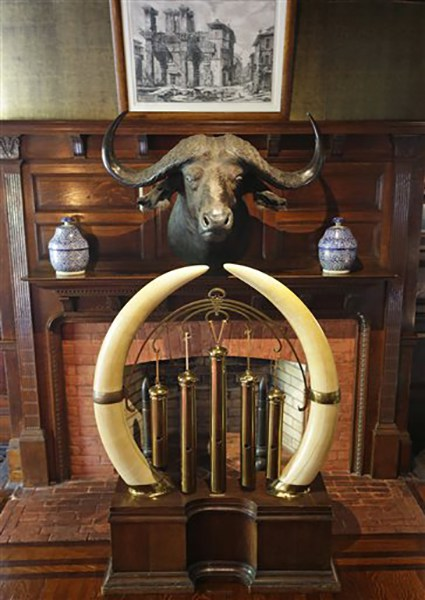 "<div class=""meta image-caption""><div class=""origin-logo origin-image ap""><span>AP</span></div><span class=""caption-text"">An African buffalo head hangs above the mantle over a fireplace, while a dinner gong decorated with Kenyan elephant tusks sit in the hallway at the entrance to Sagamore Hill (AP Photo/Kathy Willens)</span></div>"