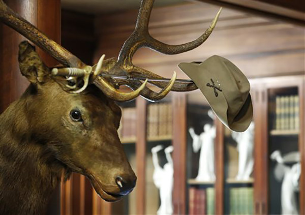 "<div class=""meta image-caption""><div class=""origin-logo origin-image ap""><span>AP</span></div><span class=""caption-text"">President Theodore Roosevelt's Rough Rider hat hangs on the horns of an elk head shot by the nation's 26th president in his trophy room at Sagamore Hill in Oyster Bay, N.Y. (AP Photo/Kathy Willens)</span></div>"