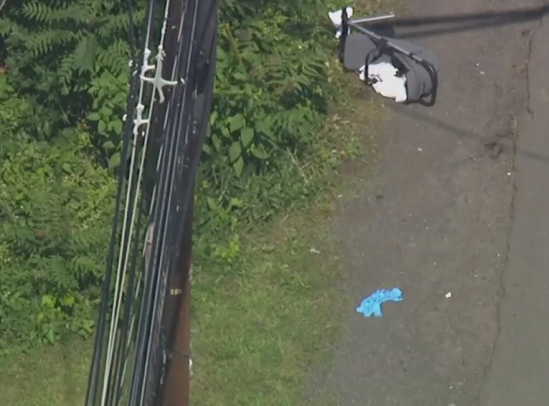 Mother, 3 children hit by auto in Rockland County
