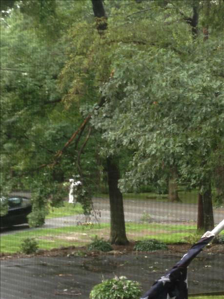 Localized damage in Jefferson, NJ. <span class=meta>(WABC Photo)</span>