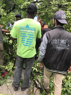 <div class='meta'><div class='origin-logo' data-origin='none'></div><span class='caption-text' data-credit='Erin Ade'>A woman was trapped underneath a tree after it fell in Central Park.</span></div>