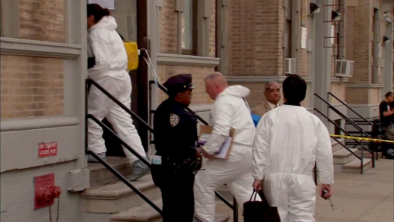Harlem boy, 6, dies covered in bruises; mom, boyfriend arrested, NYPD says