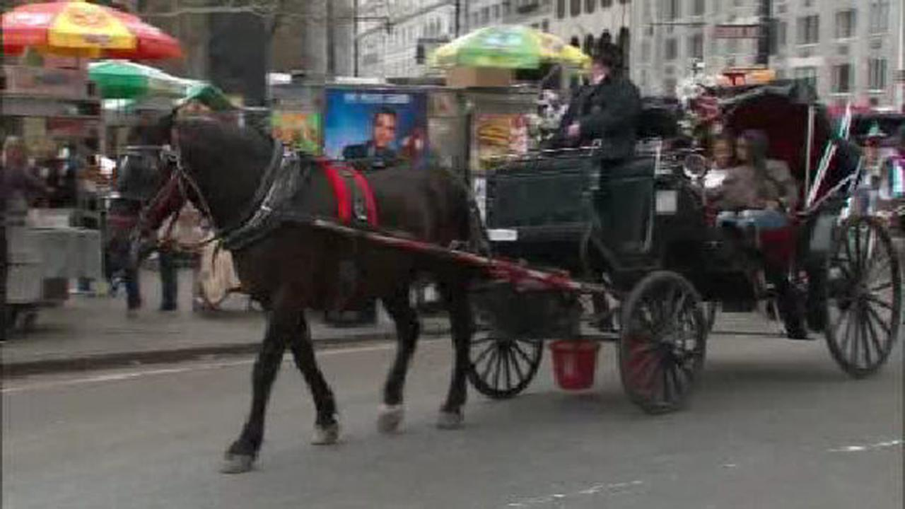 de Blasio promises to press on with limited horse carriage plan