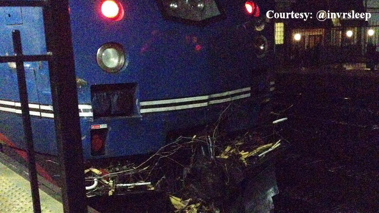 Tree falls down on Metro-North tracks in Ardsley, train hits tree