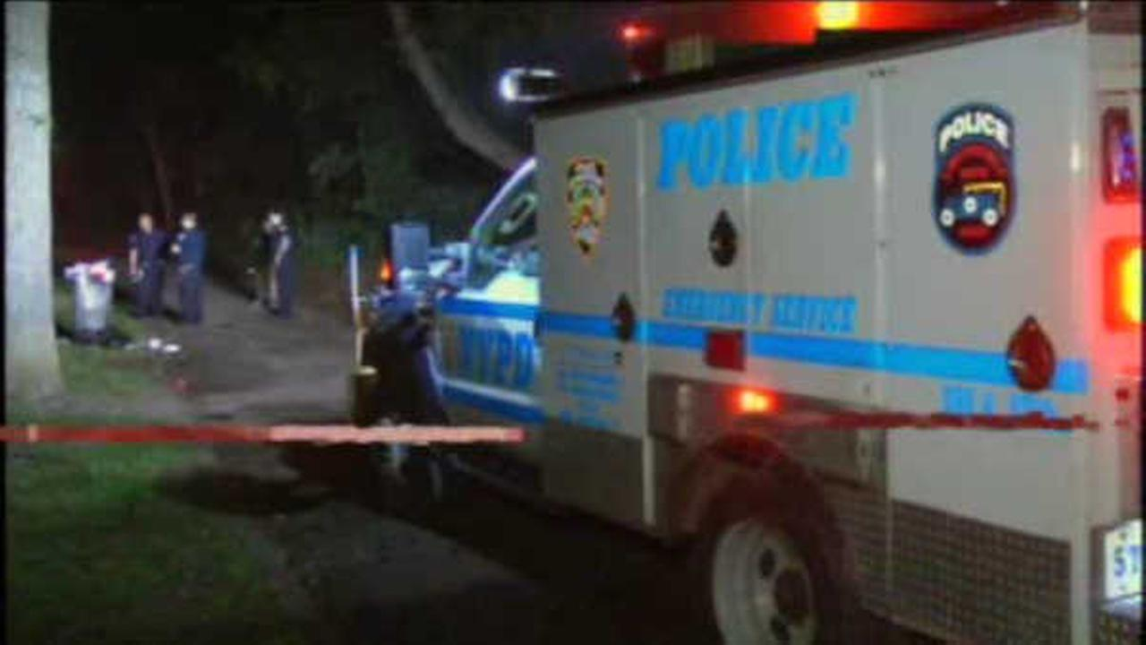 3 hurt after 'pure panic' at Bronx fraternity barbecue shooting