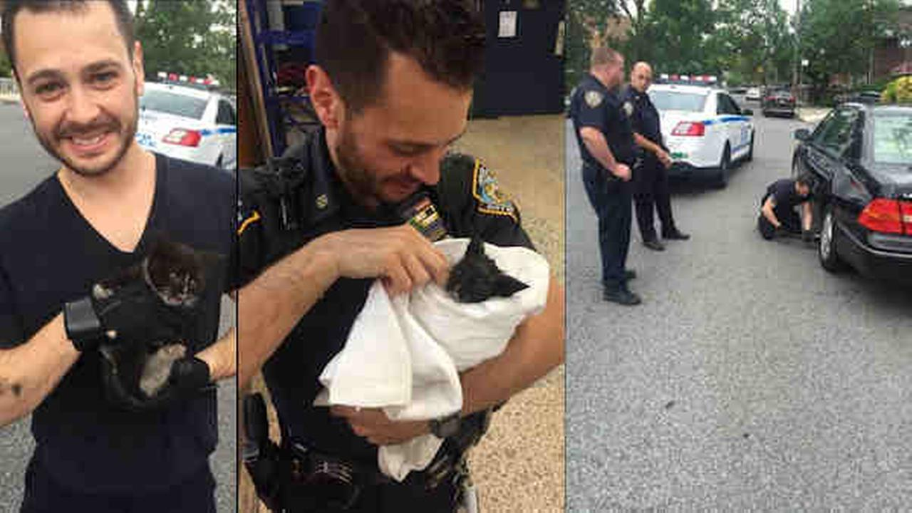 NYPD officer rescues kitten from car, then adopts it