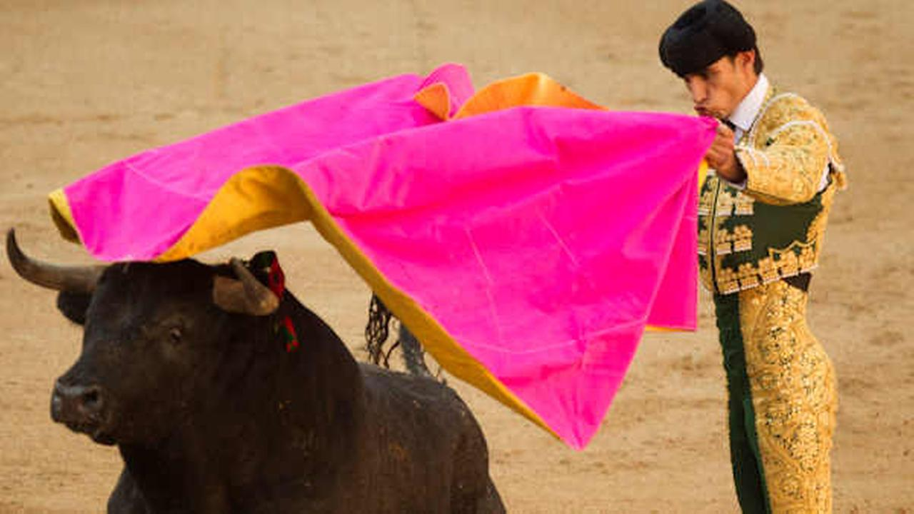 In this May 16, 2011 file photo, Spanish bullfighter Victor Barrio performs during a bullfight of the San Isidros fair at the Las Ventas Bullring in Madrid
