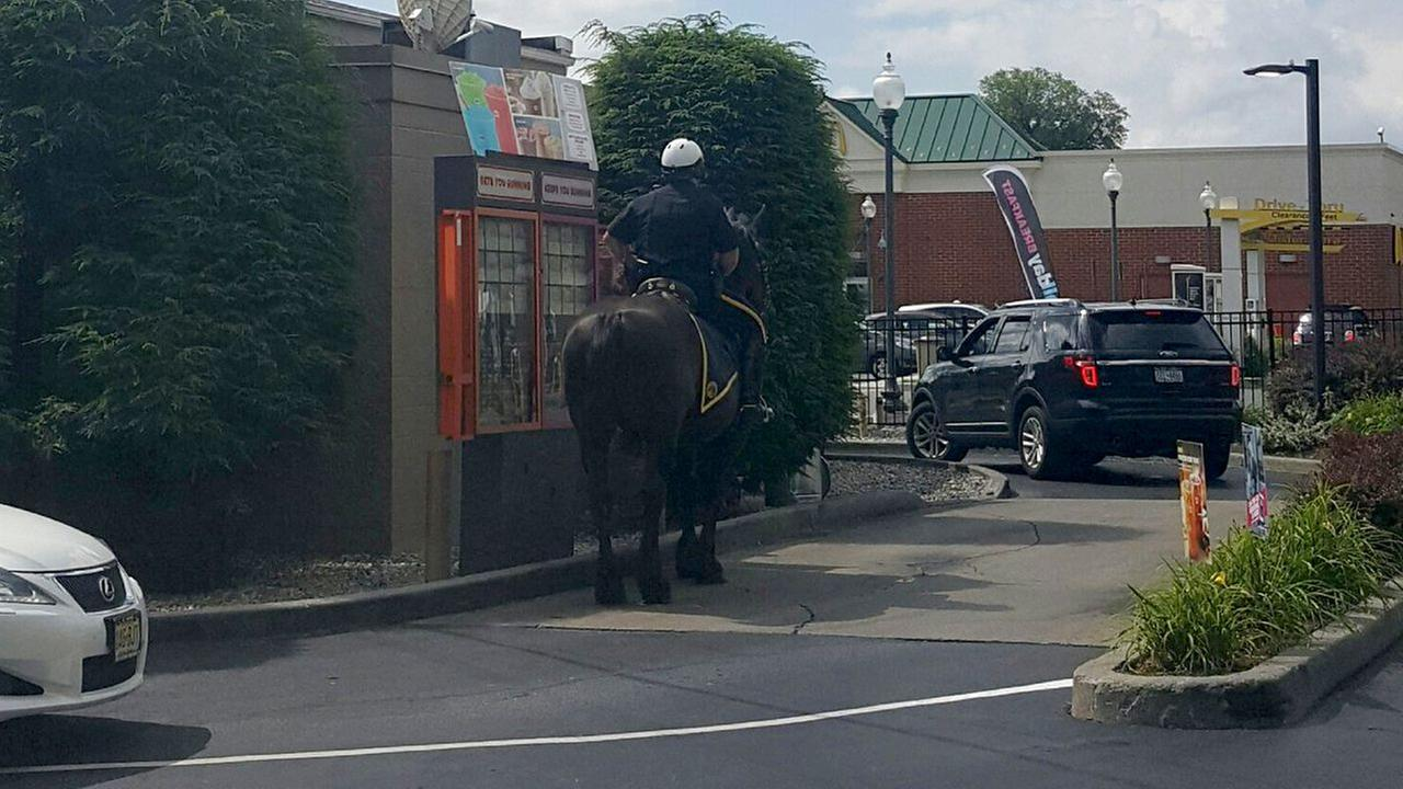 Mounted police officer rides through Dunkin' Donuts drive-thru on horseback in N.Y.