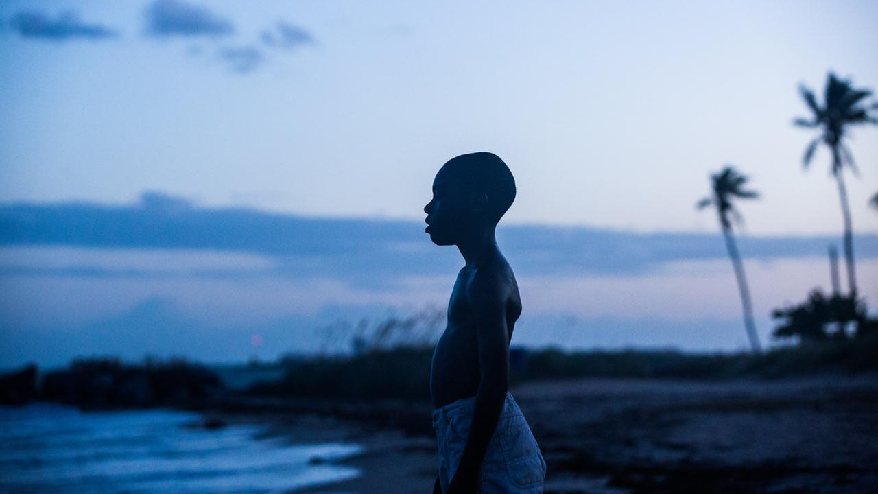 Moonlight: a gay African-American man survives Miamis drug-plagued inner city, finding love in unexpected places and the possibility of change within himself.Film Society of Lincoln Center