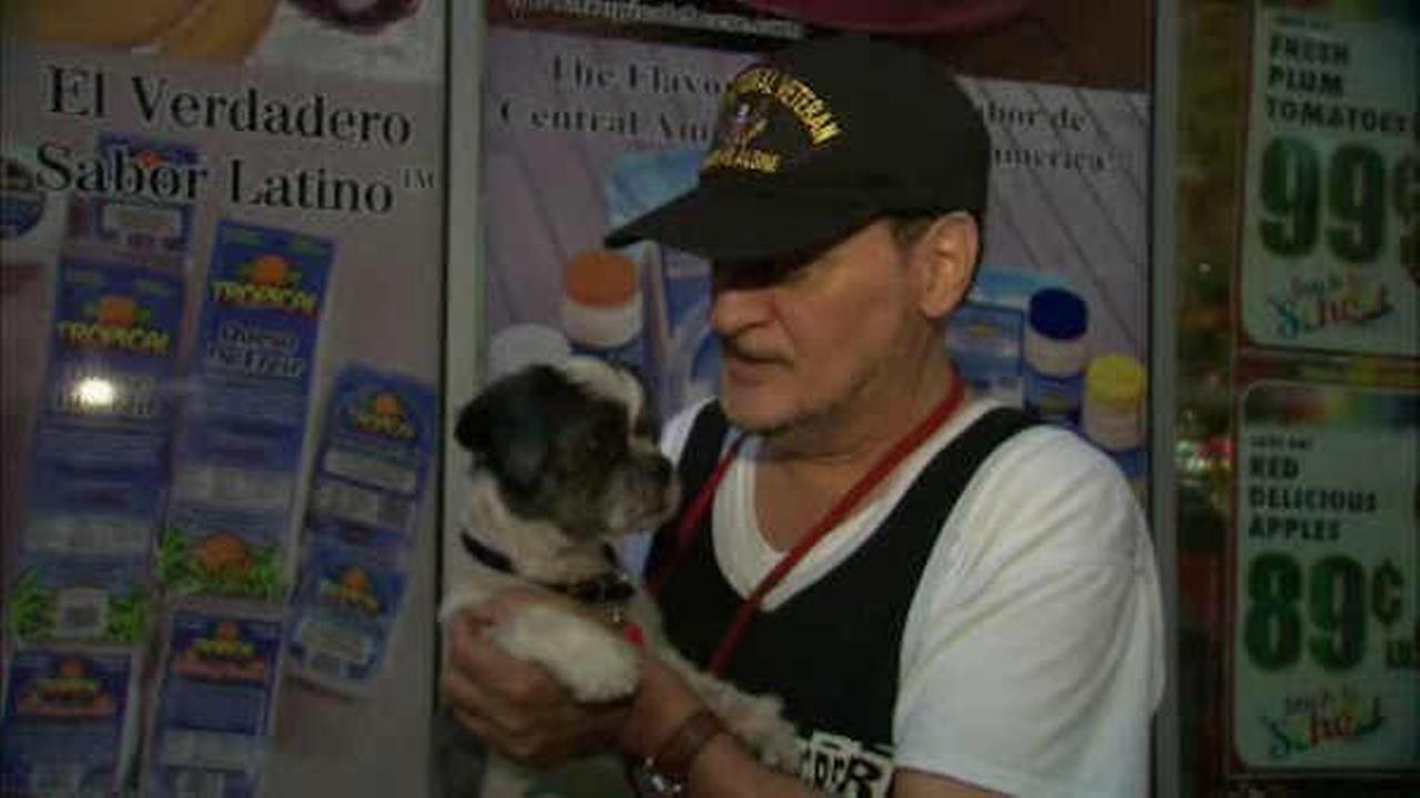 Service dog stolen from Vietnam veteran outside Bronx supermarket returned