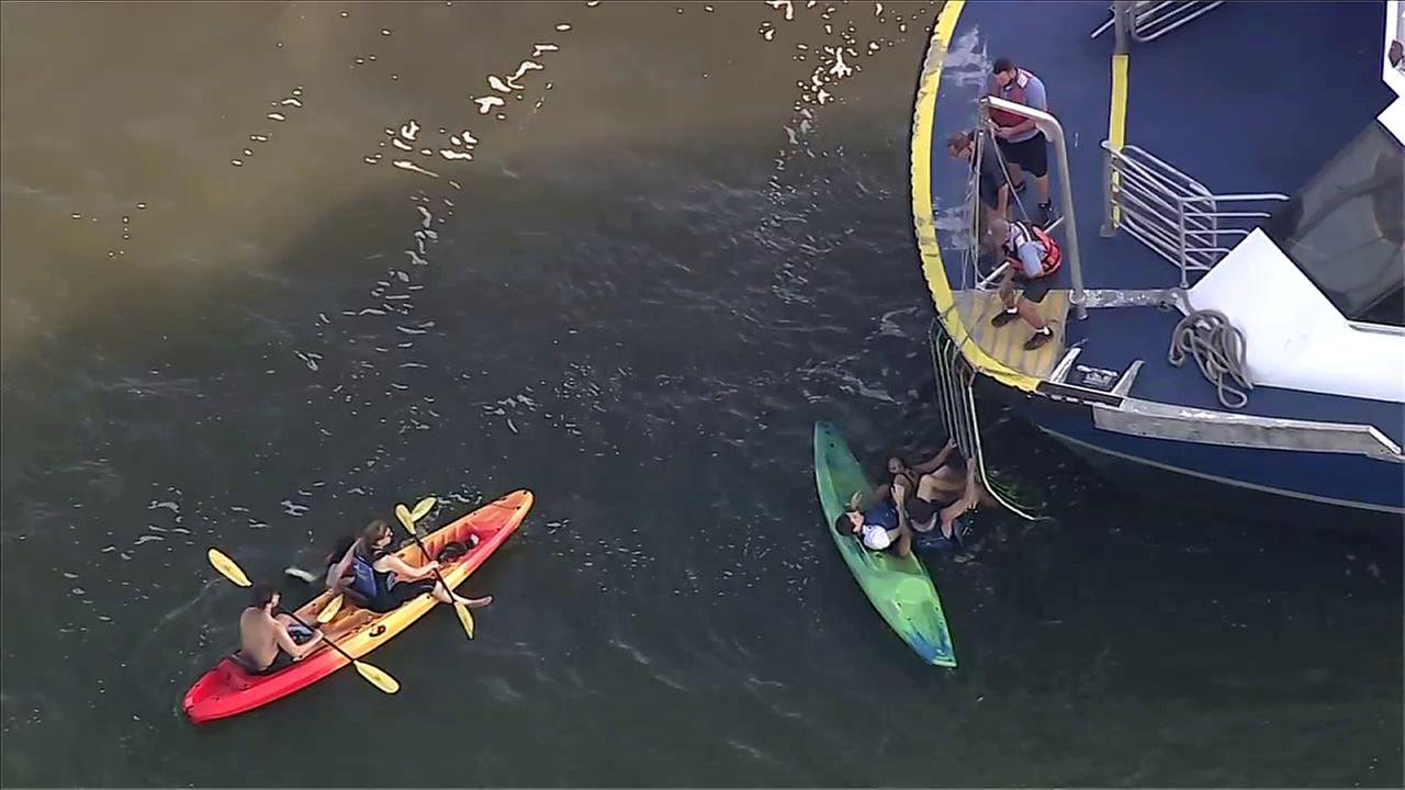 Ferry hits kayakers in Hudson River, 11 injured