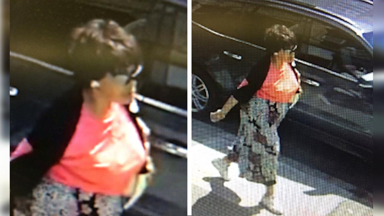 Search for suspects who scammed elderly Queens woman out of $10K