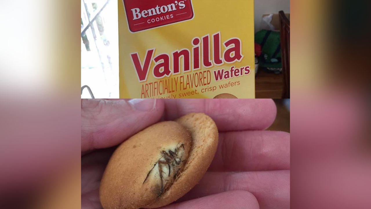 Aldi grocery chain investigating report of bug in box of vanilla wafer cookies