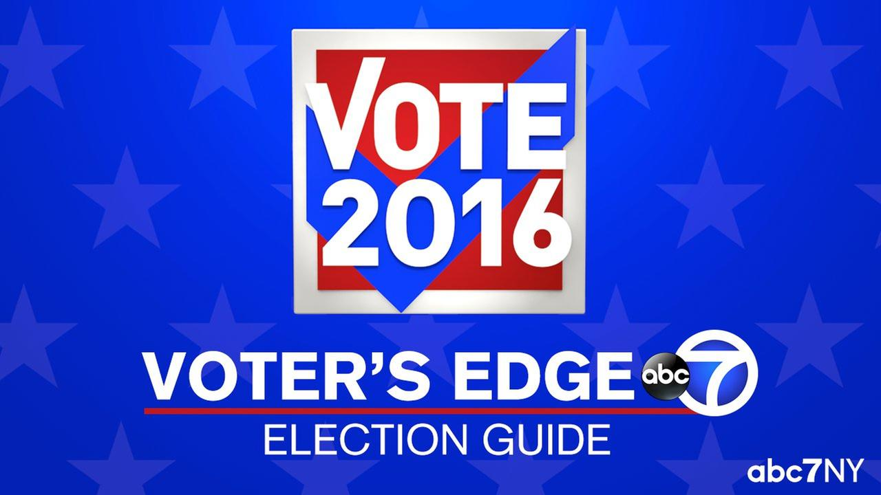 voters guide election