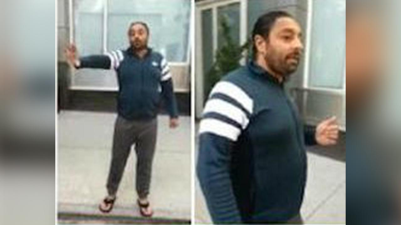 vikram chatwal wanted animal cruelty