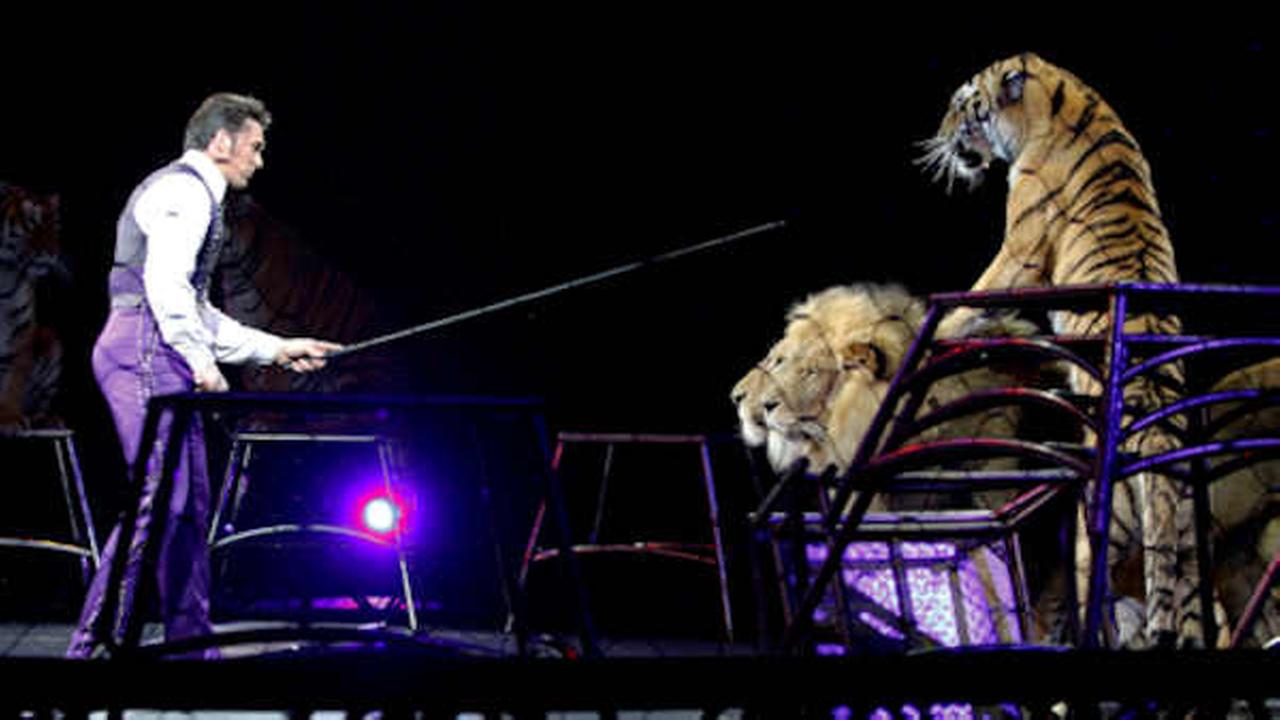 Animal advocates push for ban on exotic circus animals in NYC
