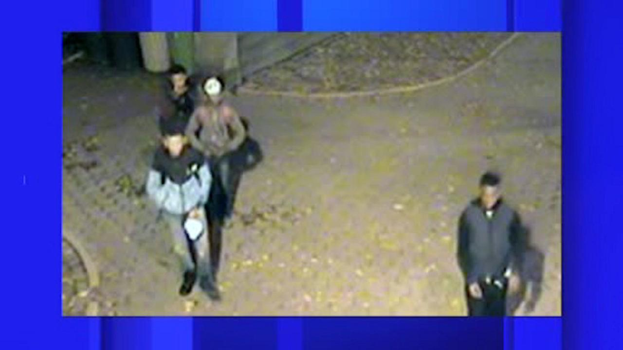 Group of teen suspects wanted in Central Park robbery spree