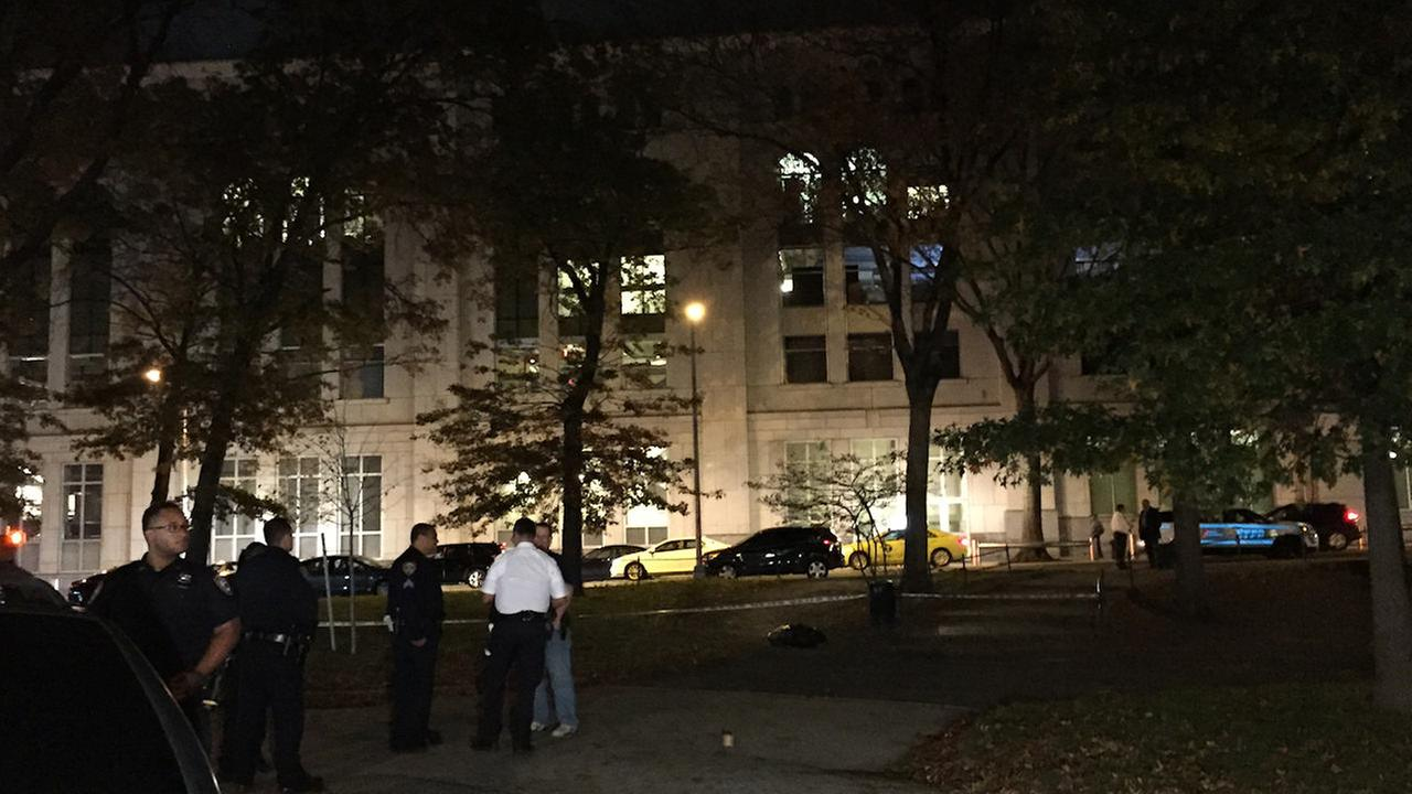 NYPD: Boyfriend confesses to shooting woman at Bronx park after first blaming muggers