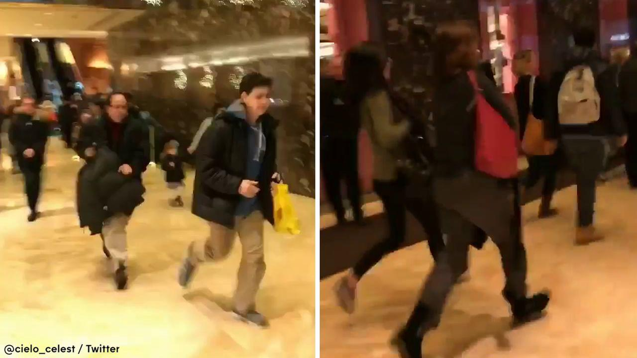 NYPD: Backpack that triggered Trump Tower evacuation was filled with toys