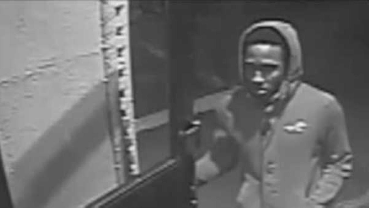 Police: Man followed woman into Ditmas Park, Brooklyn elevator in attempted rape