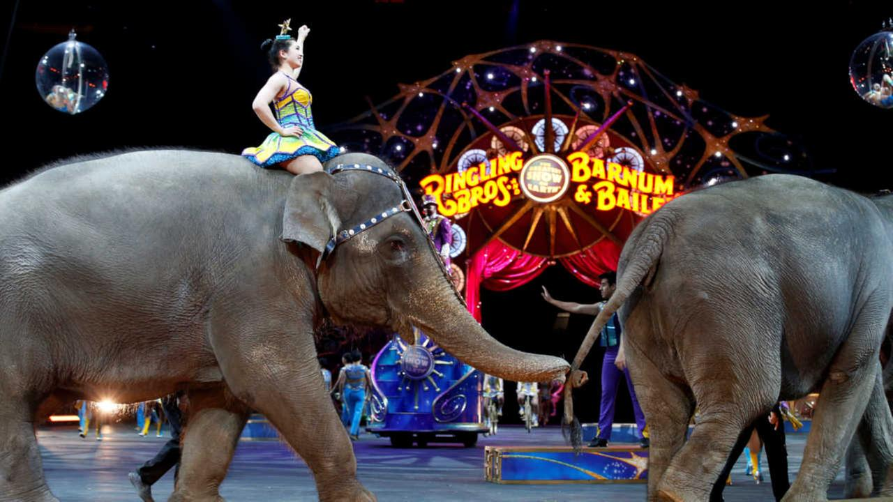 Ringling Bros. and Barnum & Bailey Circus will soon shutdown