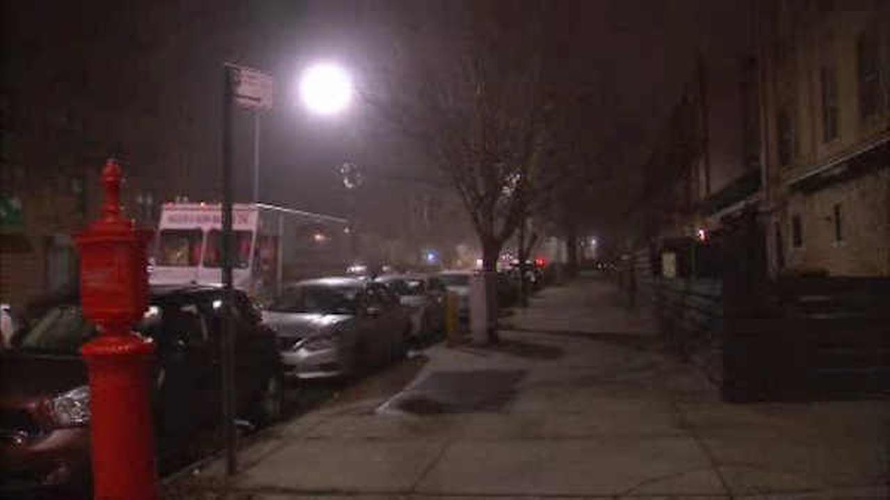 A woman was attacked in her Bay Ridge apartment.