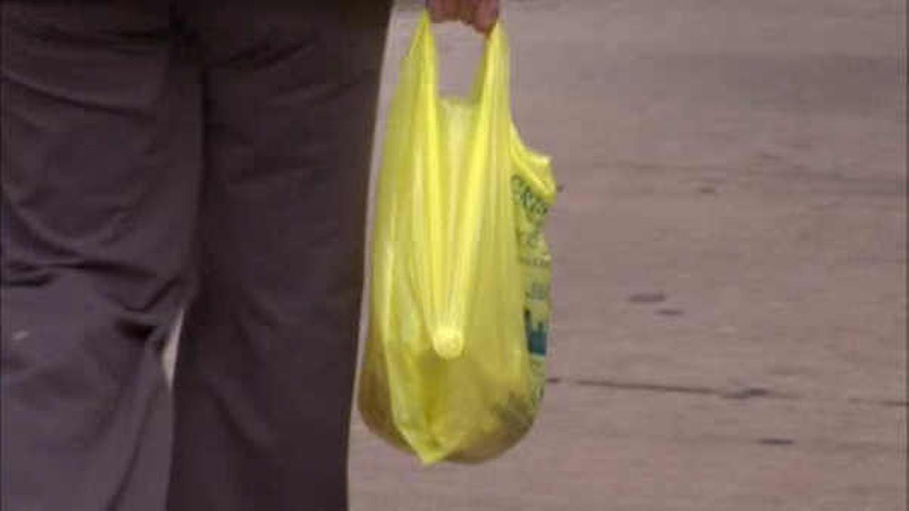 Gov. Andrew Cuomo blocks New York City Council plastic bag fee