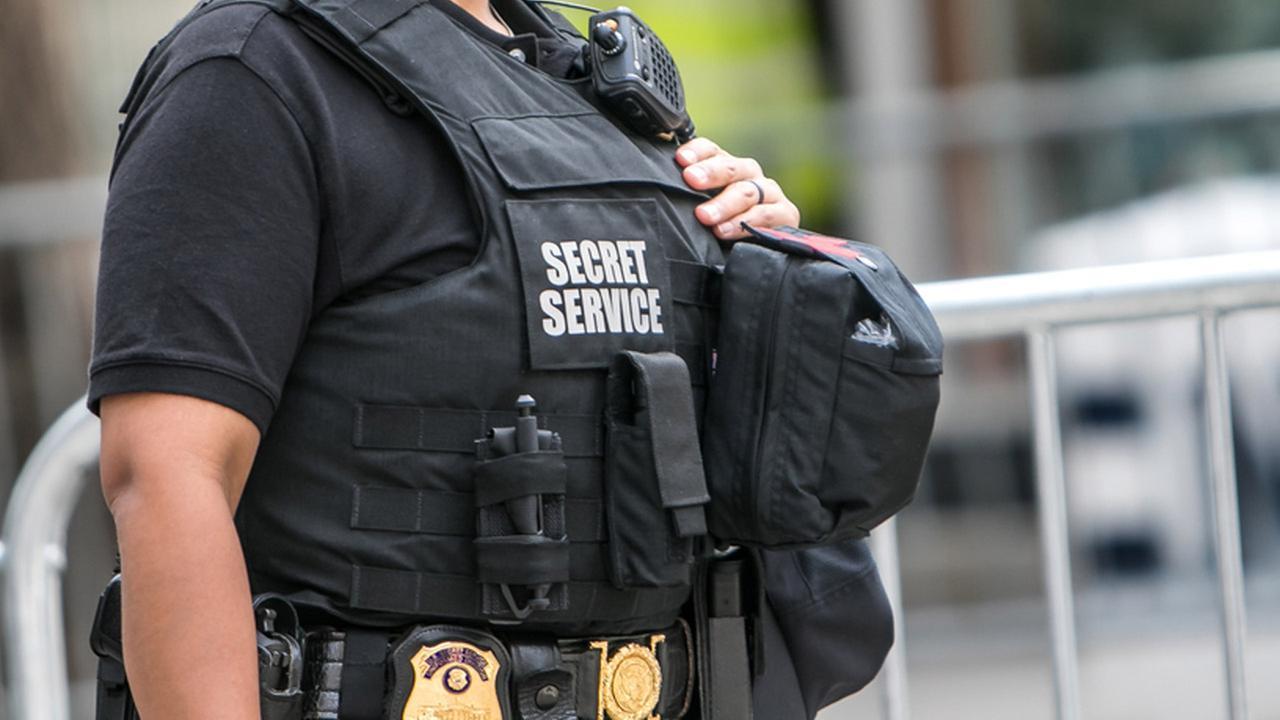 Secret service i go between
