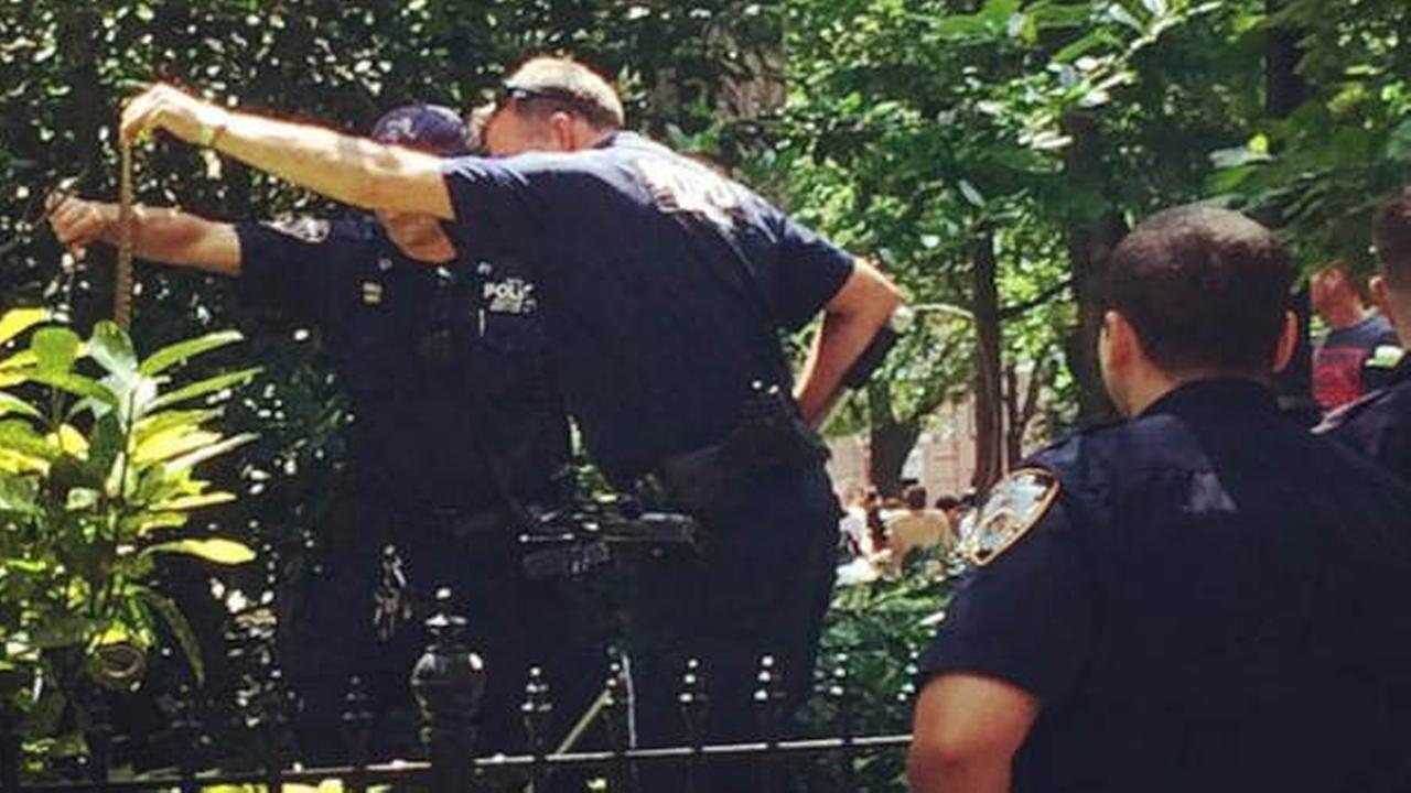 6-foot long snake found in Washington Square Park playground