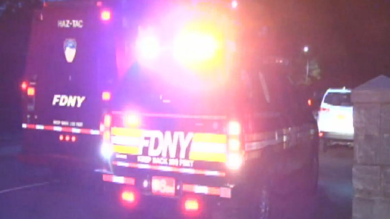 Good Samaritan rescues young boy from Central Park lake