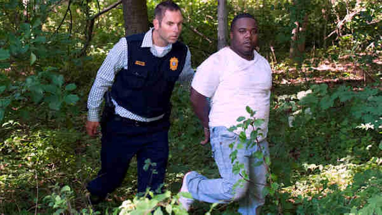Westport Detective Marc Heinmiller walks a bank robbery suspect from a wooded area off the Merritt Parkway. Courtesy Douglas Healey for WestportNow.com