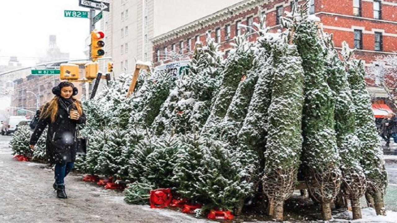 10 first snowfall photos you won't want to miss