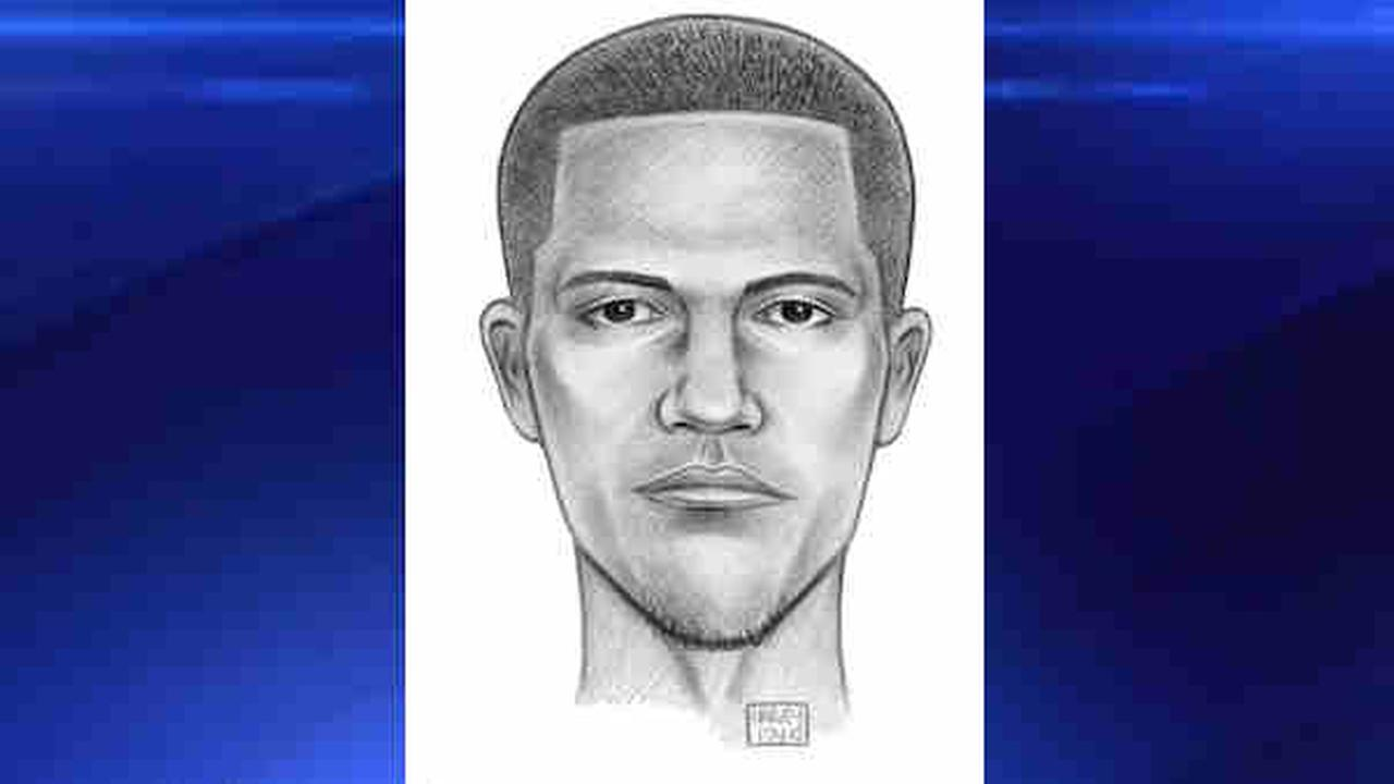 sunset park robbery sketch