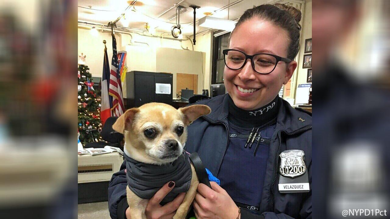 NYPD officers rescue Chihuahua from car in Manhattan as temperatures dropped near single digits