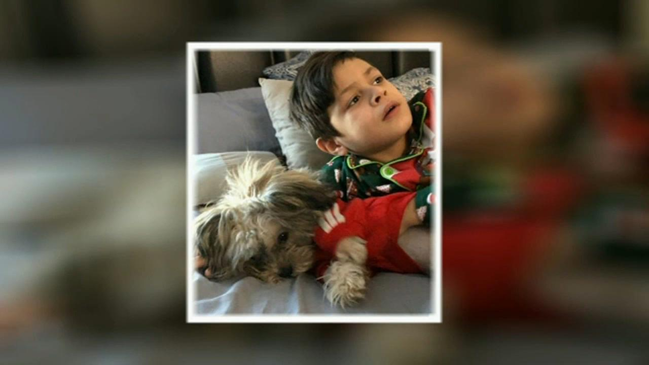 Missing therapy dog reunited with New Jersey boy with muscular dystrophy