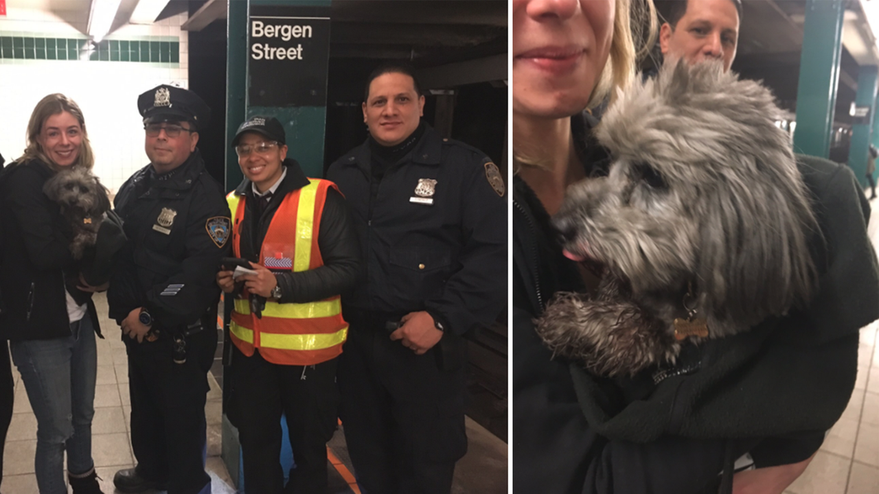 Dog running loose on subway tracks causes hour-long F train delay