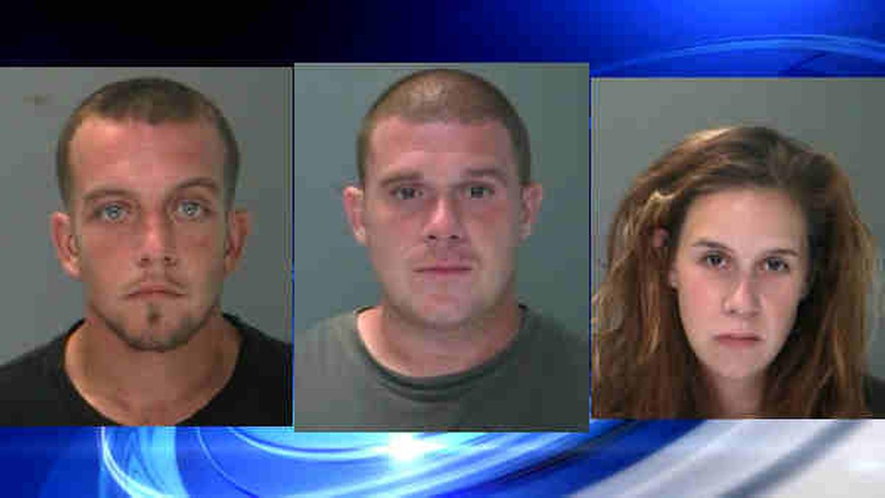 three long island suspects arrested for series of residential burglaries