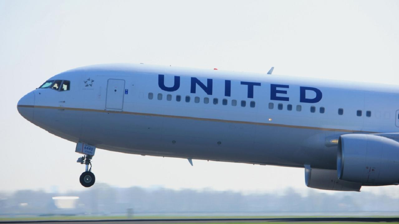 United jet diverted due to pet on wrong flight