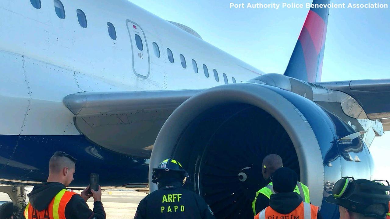 Delta flight lands safely at JFK Airport after bird strike during takeoff