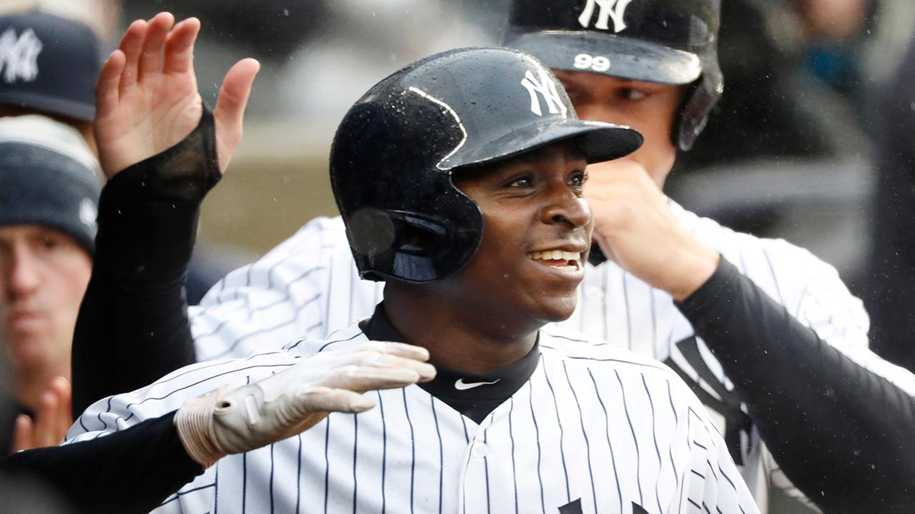 Didi Gregorius smiles while celebrating with teammates after hitting a third-inning, three-run, home run against the Tampa Bay Rays. (AP Photo/Kathy Willens)