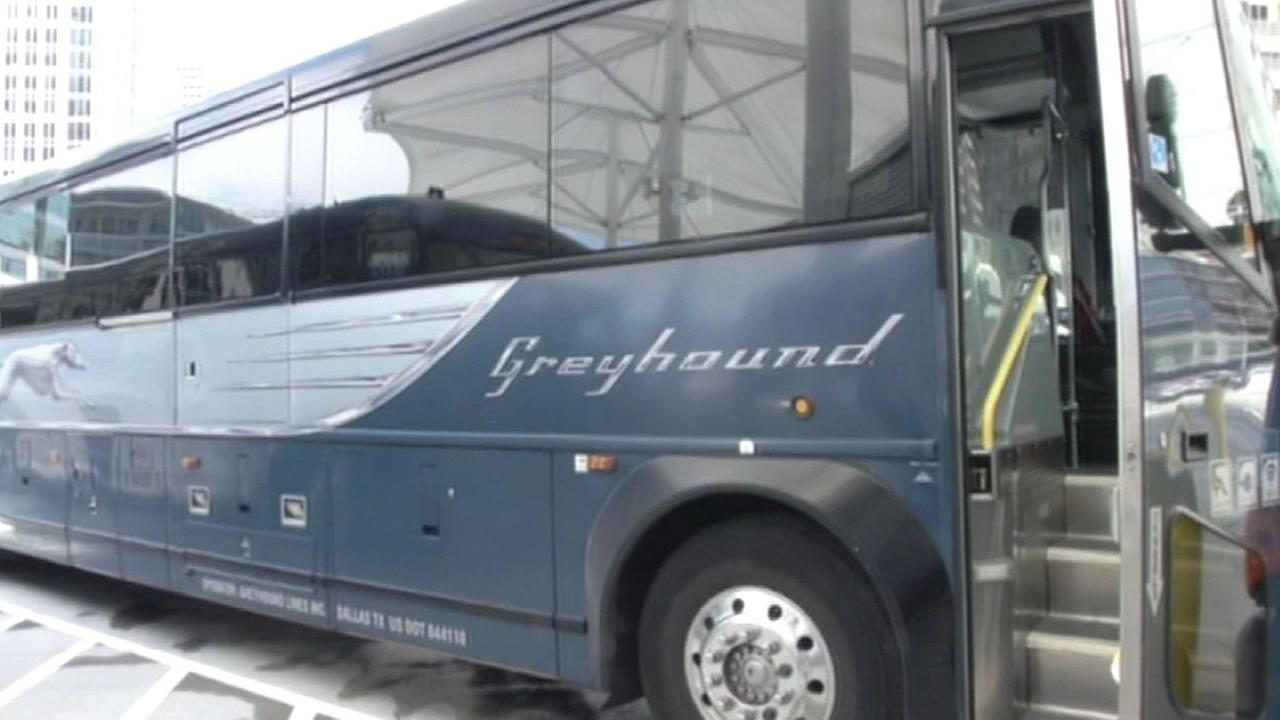 Greyhound bus logo