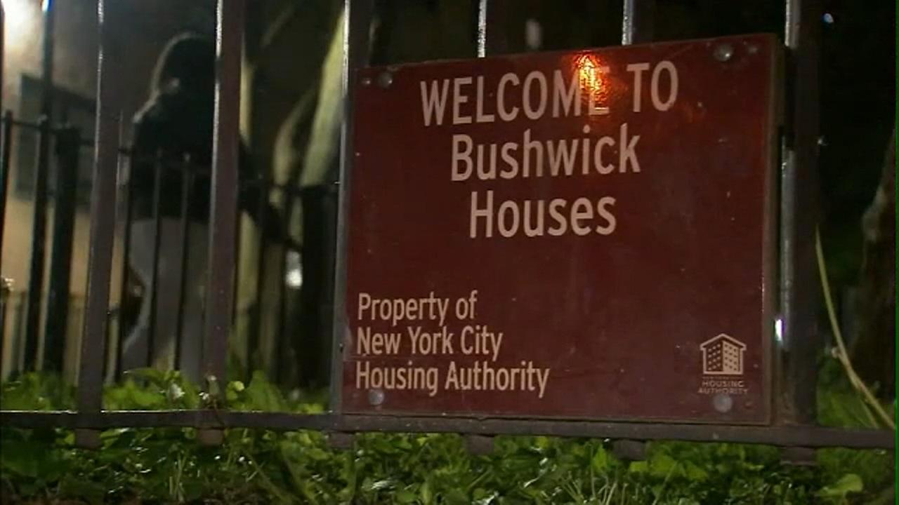 Man, woman found dead inside Bushwick houses