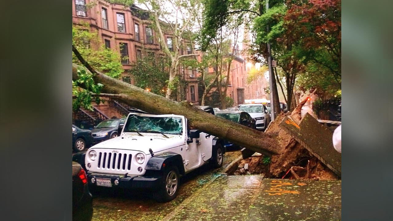 Saint Johns Place in Park Slope, Brooklyn from @evanschwartz