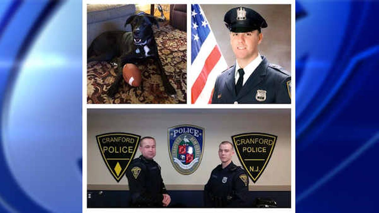 Cranford, New Jersey police officers come to rescue of choking dog
