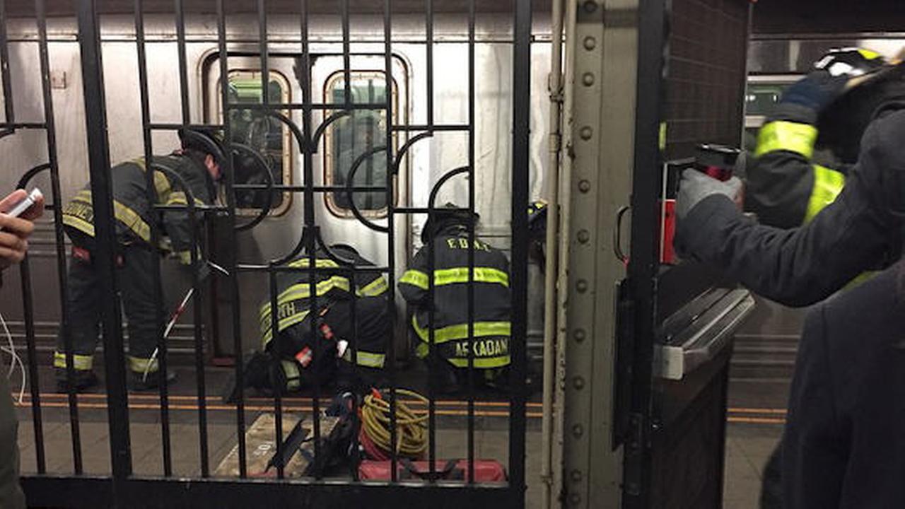subway rescue park slope