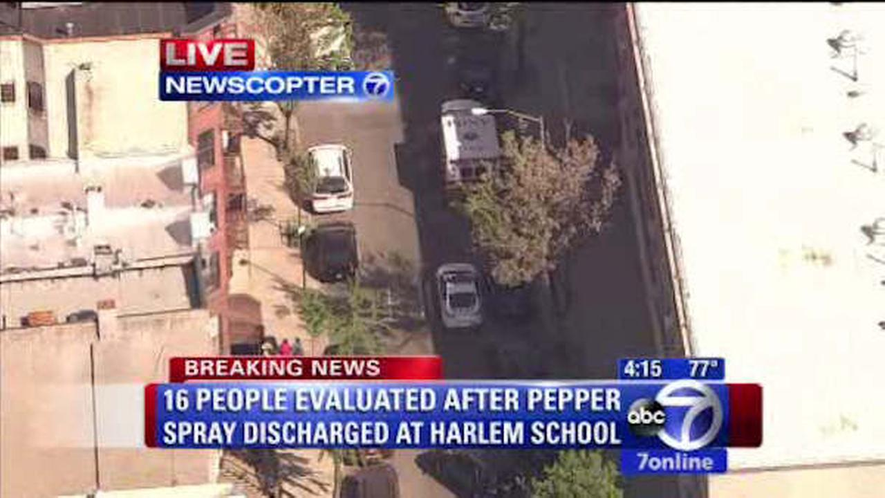 harlem pepper spray school