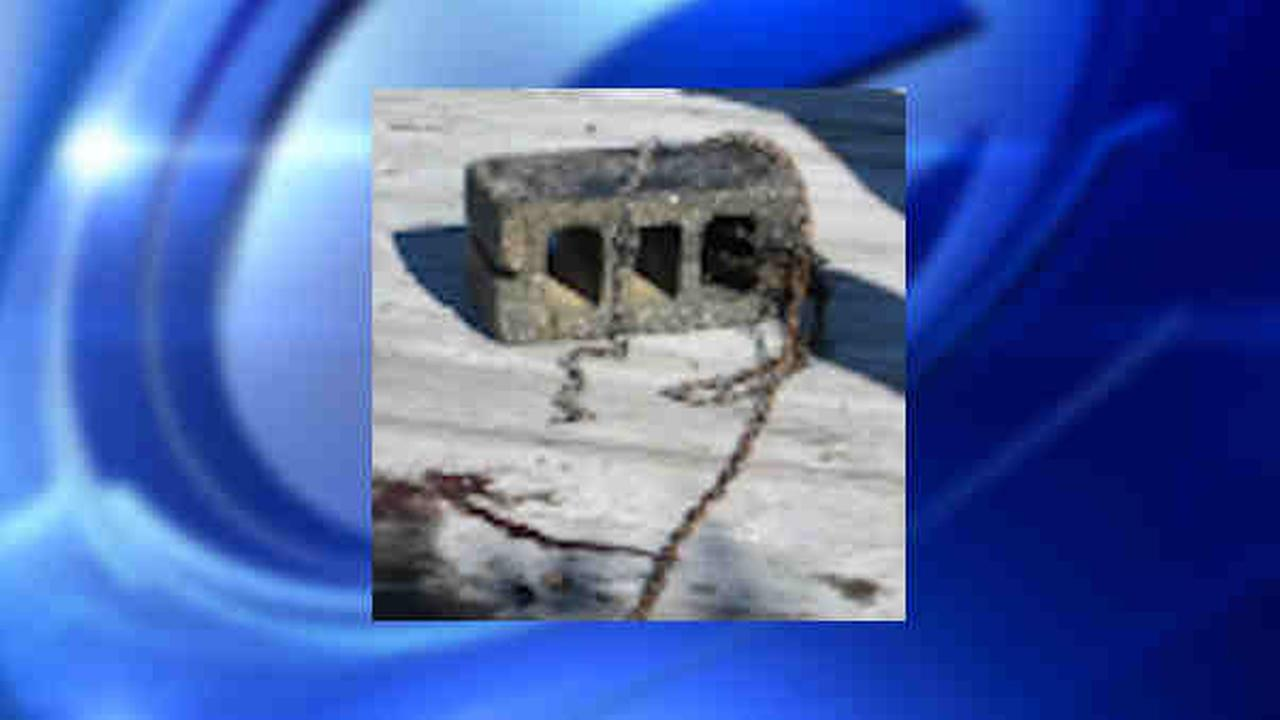 Man accused of chaining cinder block around dog, drowning it in West Islip canal