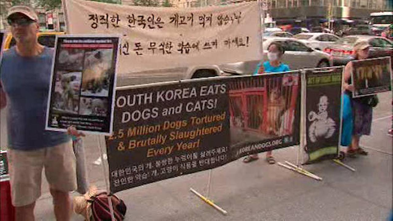 Demonstration against South Korean 'Dog Eating Festival'