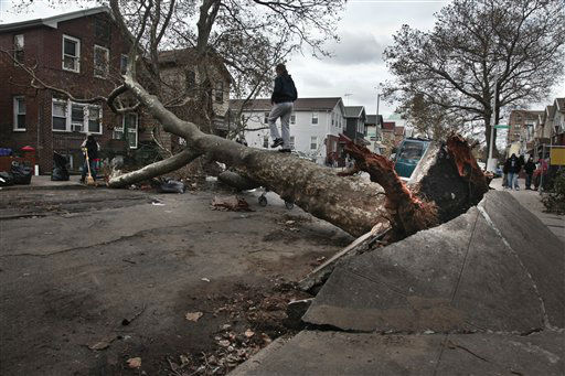 <div class='meta'><div class='origin-logo' data-origin='none'></div><span class='caption-text' data-credit='AP Photo/ Bebeto Matthews'>A girl plays on a fallen tree on Brighton 6th Street in the Brighton Beach area of Brooklyn in New York on Thursday, Nov. 1, 2012.</span></div>